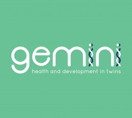 Gemini-Logo-Final-negative